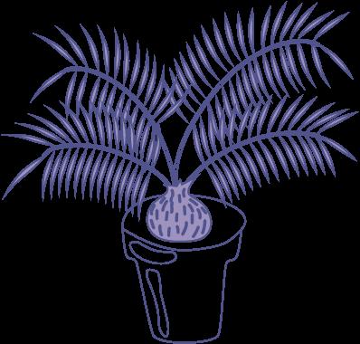 Cserepes növény - Creative Room